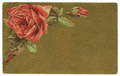 Vintage Roses Background Greeting Card Stock Photos - 28813473