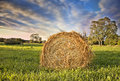Bale Of Hay. HDR Stock Image - 28838451