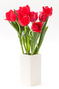 Tulip In Vase Royalty Free Stock Photos - 28851768