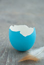 Easter Egg Royalty Free Stock Photo - 28870055