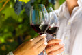 Woman And Man In Vineyard Drinking Wine Stock Photos - 28876203