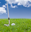 Golf Ball And Iron On Tall Grass Stock Images - 28908634