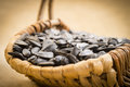 Sunflower Seeds Stock Photography - 28918852