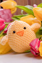Decoration With Chick And Tulip Flowers Stock Photography - 28924892