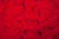 Red Textured Background Stock Photography - 28932992