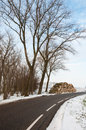 Stock Pile Sawed Trees Along The Side Of The Road In Winter Royalty Free Stock Image - 28990736