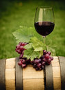 One Glass Of White Wine And Grape Royalty Free Stock Photos - 28993868