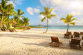 Sunset Dream Beach With Palm Tree Over The Sand. Tropical Paradise. Dominican Republic, Seychelles, Caribbean, Mauritius. Vintage Stock Photography - 29017132