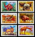 Postage Stamp Stock Images - 29031584