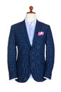 Male Clothing Suit Royalty Free Stock Image - 29057626