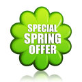 Special Spring Offer Green Flower Label Stock Photo - 29072630
