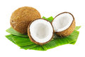 Coconuts Royalty Free Stock Image - 29079016