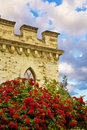 Red Roses In Front Of Castle Stock Image - 2910271
