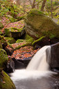 Autumn Leaves And Burbage Brook In Padley Gorge In Peak District Royalty Free Stock Images - 29100329