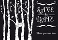 Wedding Invitation With Birch Trees, Vector Stock Photos - 29212183