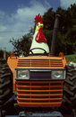 Chicken Tractor Royalty Free Stock Photo - 29214125