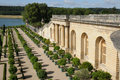 France, Garden Of The Versailles Palace Orangery Stock Photos - 29274483
