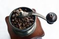 Coffee Seeds Stock Images - 29300084