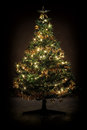 Decorated Christmas Tree Stock Photo - 29314860