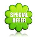 Spring Special Offer Green Flower Label Stock Photos - 29324153