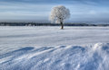 Winter Landscape, Russia Stock Photography - 29350682