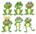 Green Frogs Stock Image - 29373621