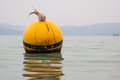Yellow Buoy Floats Stock Images - 29381174