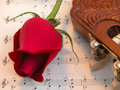Red Rose And Guitar Stock Photo - 29409890