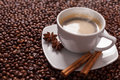 Coffee Cup With Spices Royalty Free Stock Image - 29427266