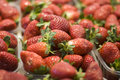 Punnets Of Strawberries Royalty Free Stock Image - 29467206