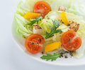 Fresh Salad - Lettuce, Cherry Tomatoes, Rucola, Paprika And Croutons Royalty Free Stock Image - 29472906
