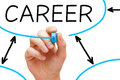 Career Flow Chart Blue Marker Stock Photography - 29485032