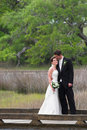 Handsome Bride And Groom Stock Image - 2955621
