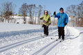 Cross-country Skiing Stock Photography - 29501822