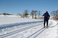 Cross-country Skiing Royalty Free Stock Photography - 29502017
