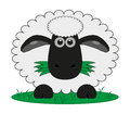 Sheep Stock Photography - 29539082