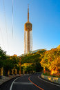 The TV Tower Royalty Free Stock Photo - 29589085