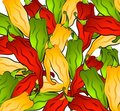 Hot Chili Peppers Background Royalty Free Stock Photography - 2968917