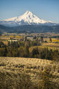 Mt Hood, Apple Orchards, Oregon Stock Photos - 29606283