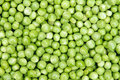 Fresh Pea Stock Image - 29614761