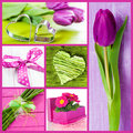 Spring Collage Royalty Free Stock Image - 29645796