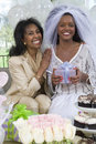 Bride And Her Mother At Hen Party Stock Photo - 29653240