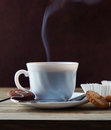 Steaming Cup Of Hot Coffee And Cookies Stock Photography - 29673342