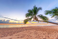 Sunset Under Tropical Coconut Palm Tree Royalty Free Stock Photo - 29698345