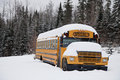 Abandoned Weird School Bus Royalty Free Stock Photo - 29702225