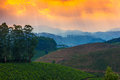 Landscape Tea Plantations And Mountains In A Pre-dawn Haze, India Kerala Stock Photography - 29714442