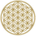 Flower Of Life - Sacred Geometry Royalty Free Stock Photography - 29724667