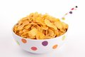 Bowl Of Cereal Royalty Free Stock Photography - 29742247