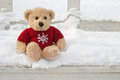 Teddy  Bear Royalty Free Stock Photos - 29756548
