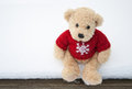 Teddy  Bear Stock Photography - 29756562